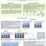 Raw milk for direct human consumption inoculated with the probiotic Lactobacillus rhamnosus GG